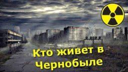 Kto zhivyot v CHernobylskoj Zone Kak pomoch otshelnikam samosyolam v radioaktivnom lesu 256x144 c - ✅КТО ЖИВЁТ В ЧЕРНОБЫЛЬСКОЙ ЗОНЕ? ☢ КАК ПОМОЧЬ ОТШЕЛЬНИКАМ САМОСЁЛАМ В РАДИОАКТИВНОМ ЛЕСУ-